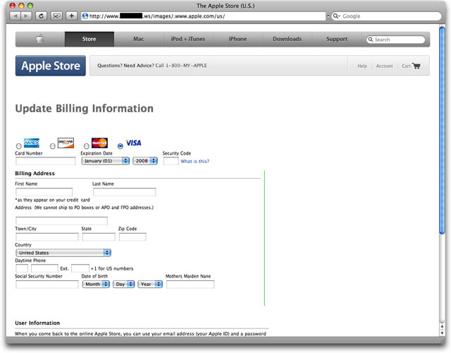 Phony Apple Store phishing web site page